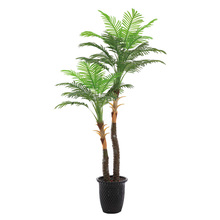1.6 M Silk Palm Tree