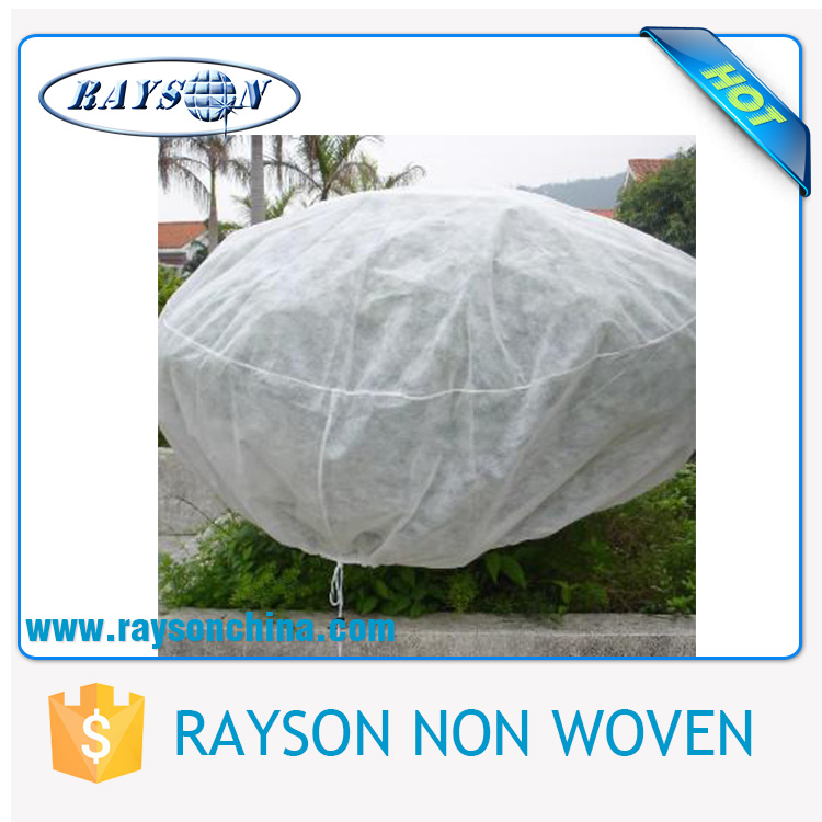 100% PP Non Woven Big Fruit Tree Covers