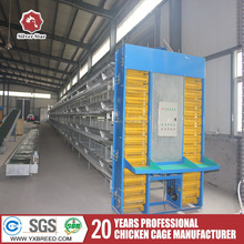 Complete chicken farm equipment egg chicken cage for egg production