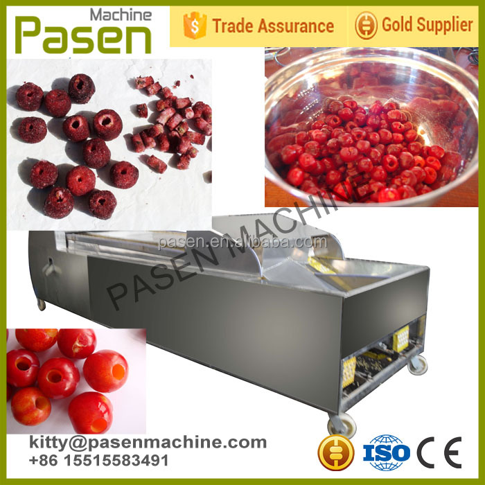 Cherry Kernel and Shell Separating Machine | palm date deseeding machine | jujube dates pitting machine