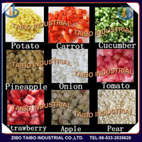 CHD100 industrial electric vegetable Dicer for tomato potato onion