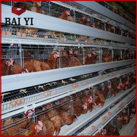 Cheap price for chicken layer cage /chicken cage layer poultry / layer egg chicken cage