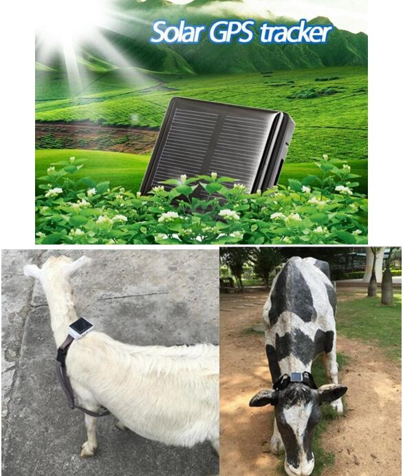 animals gps tracker for pets cats dogs sheep RF-V26 by solar sun powered , mini gps tracker waterproof