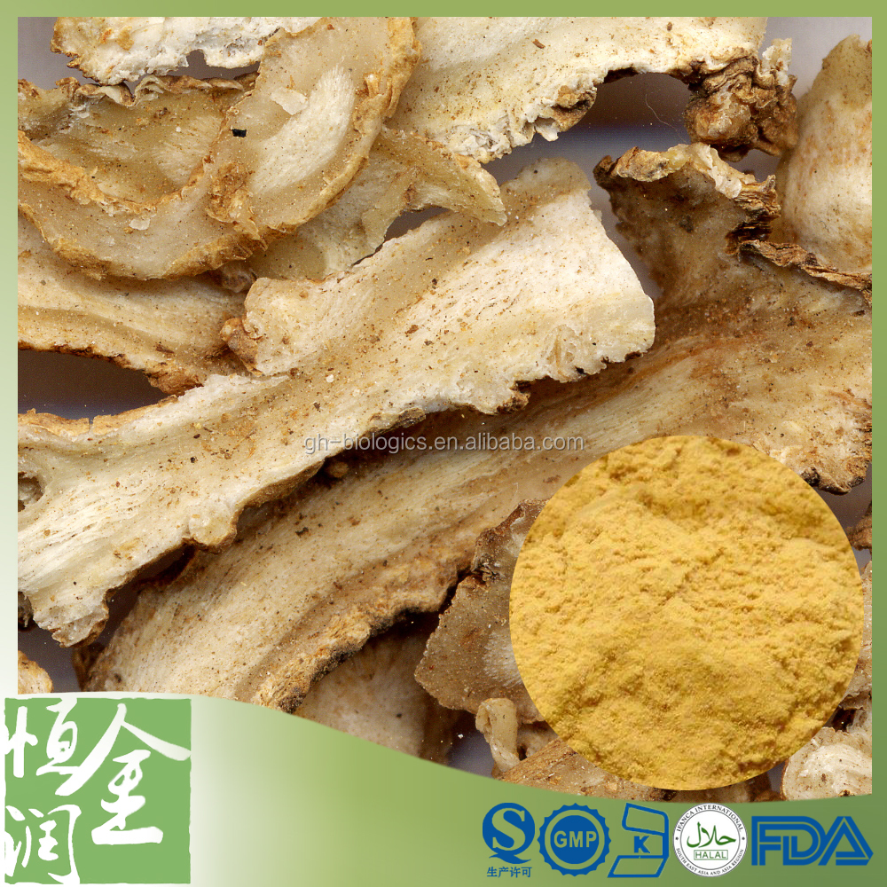 Factory Supply Angelica sinensis Angelica Root Extract