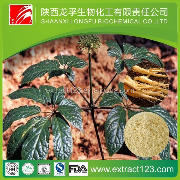 Low price high quality ginseng siberian extract powder