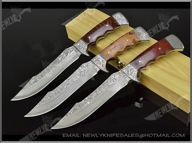 Collection Fixed Blade Knife Damascus Steel Knife Blanks