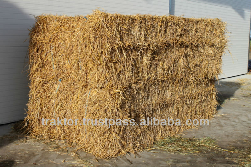 Wheat straw