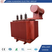 Warranty 3 years High Quality Huge Capacity 33 KV 11KV Power Distribution Transformer