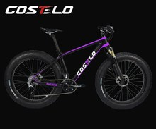 "Costelo 16""/18""/20"" full carbon fat bike frame , best quality carbon snow bike frame T700 , free shipping"
