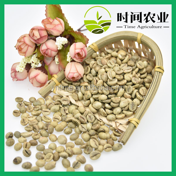 Wholesale screen18 green robusta coffee beans