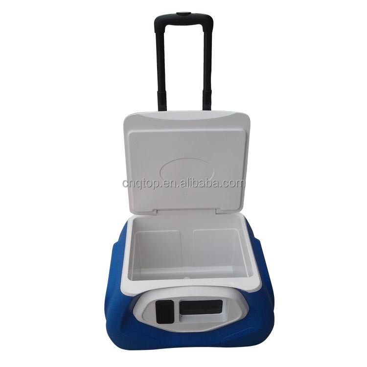 28L plastic Insulated carrier box with bluetooth speaker and wheels