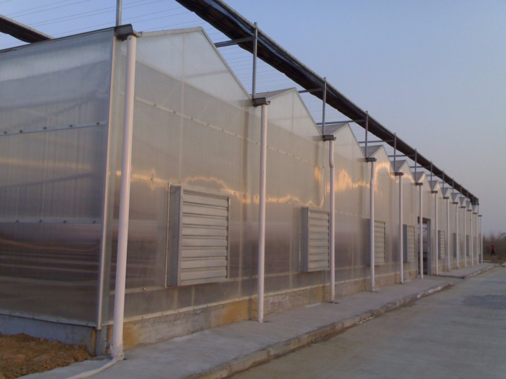 Prezzo lastra di policarbonato serra giardino serre in for Serra agricola usata