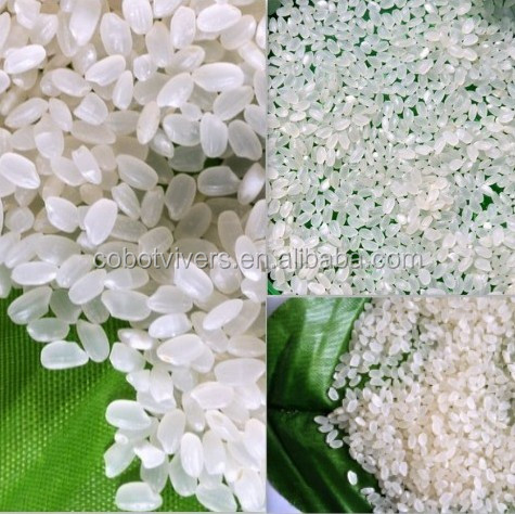china rice export Company with types of rice