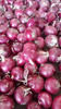 /product-detail/2016-crop-chinese-red-onion-in-the-market-for-sale-60475579608.html