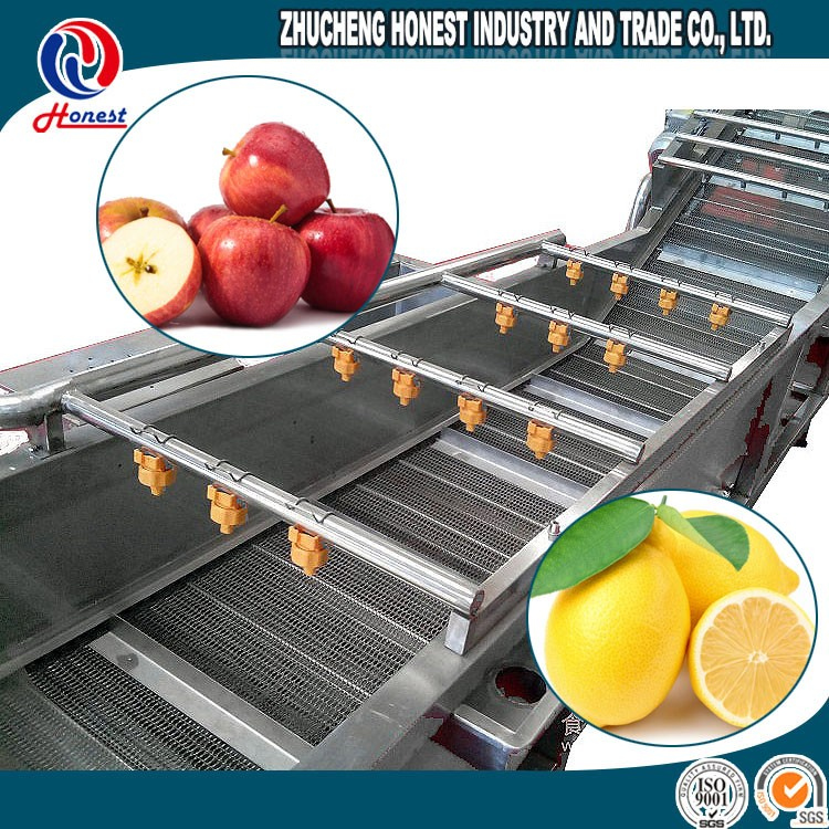 1000Kg per Hour Fruit Juice Processing Plant Equipment, Fruit and Vegetable Washing Equipment and Drying Machine