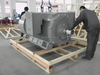 Y2HV Series High Voltage Compact structure electric motor 6KV 10KV 11KV 3000kw