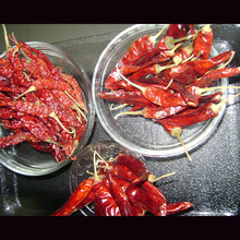 Red chillies varieties in India