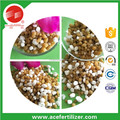 leek vegatable growing use clorine based bb complex control released compound fertilizer npk 26-4-10 granular