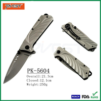Hot Titanium Coating Stainless Steel Folding Tactic Combat Knife