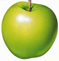 High quality new crop Scientific Name of Green Apple Fruits
