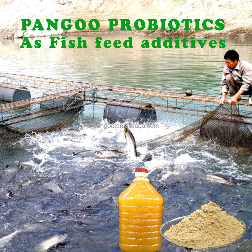 Killing Algae In Fish Ponds Homemade Algaecide Buy Ultrasonic Pond Algae Control Kill Blanket