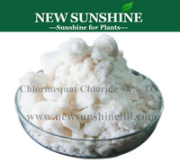 Chlormequat plant growth retardant