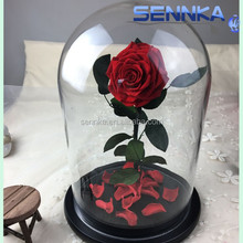 hobby lobby wholesale flowers glass cover preserved rose in dome glass