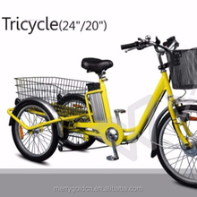 Three-Wheel Motorized Adult Tricycle Electric Bicycle 24inch Brushless 250W Cargo Tricycle