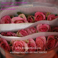 China rose farm provides fresh cut rose, carnation, lily, chrysanthemums and other flowers and greenery