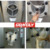 Wholesale price hard ice-cream machine