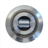 Adjustable combined bearing with steel cap