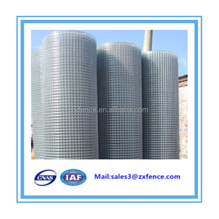 PVC Coated Green Hot Dip Galvanized Welded Wire Mesh for Fence Panels