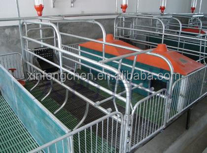Pig farm equipment pig crates farrowing