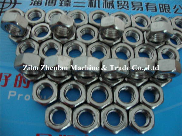 Stainless Steel 316 Hex Nut M20 M22 M24 M32