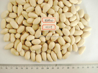 good quality blanched peanut
