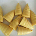 Bamboo Shoot Product Canned Vegetable In Tins