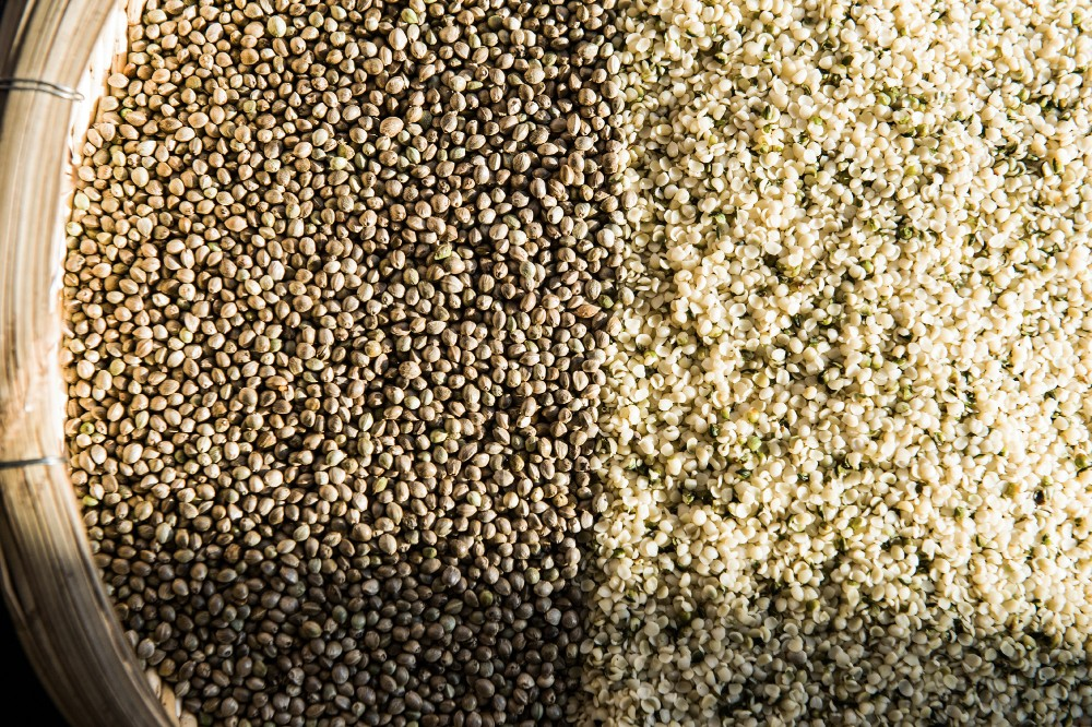 Premium quality hulled hemp seed