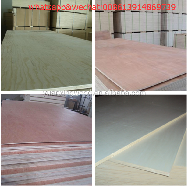 full birch pine plywood panel china factory,concrete form plywood