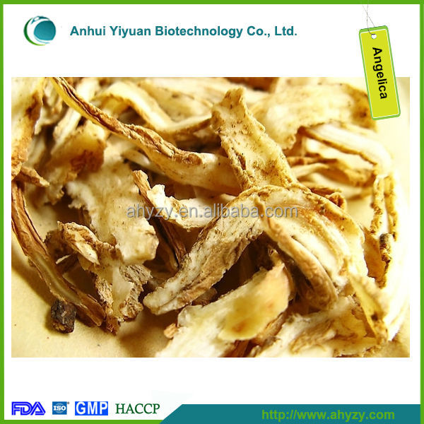 Radix Angelica Sinensis Root and danggui In Chinese