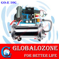 10g ozone cell with dual water cooled enamel ozone tube for industrial water purifying