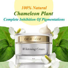 Supplier Pure Tea Tree Oil Rejuvenation Bio White Moisturizing Cream