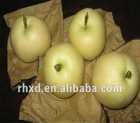 Fresh Yali pears manufacturer with best price from Chinese Ya pear