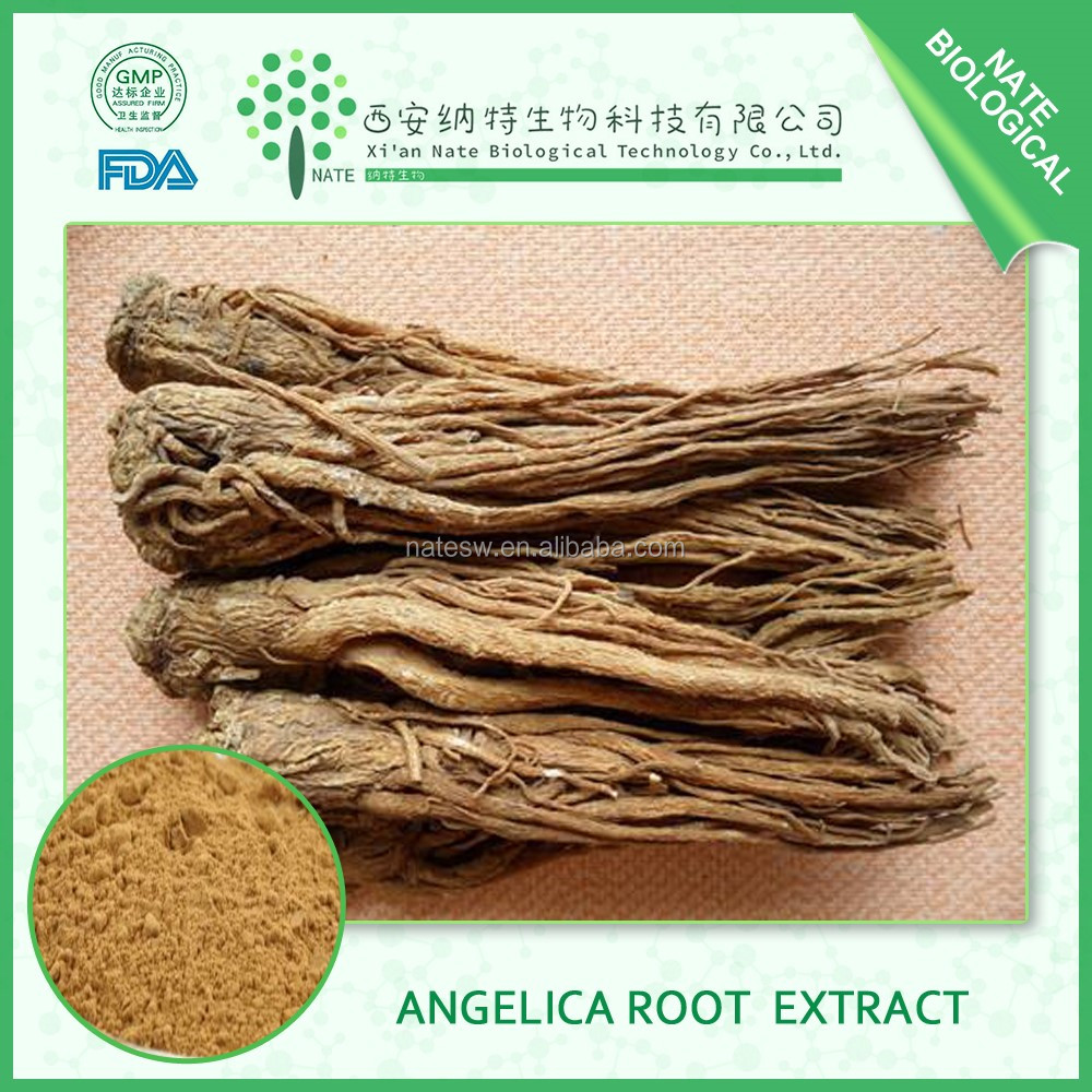 2017 wholesale low price angelica root extract dong quai extract powder CAS NO. 4431-01-0 ligustilide 1% free sample