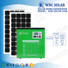 Easy Installtion No Noise 1000W 220V output Solar Power Solution