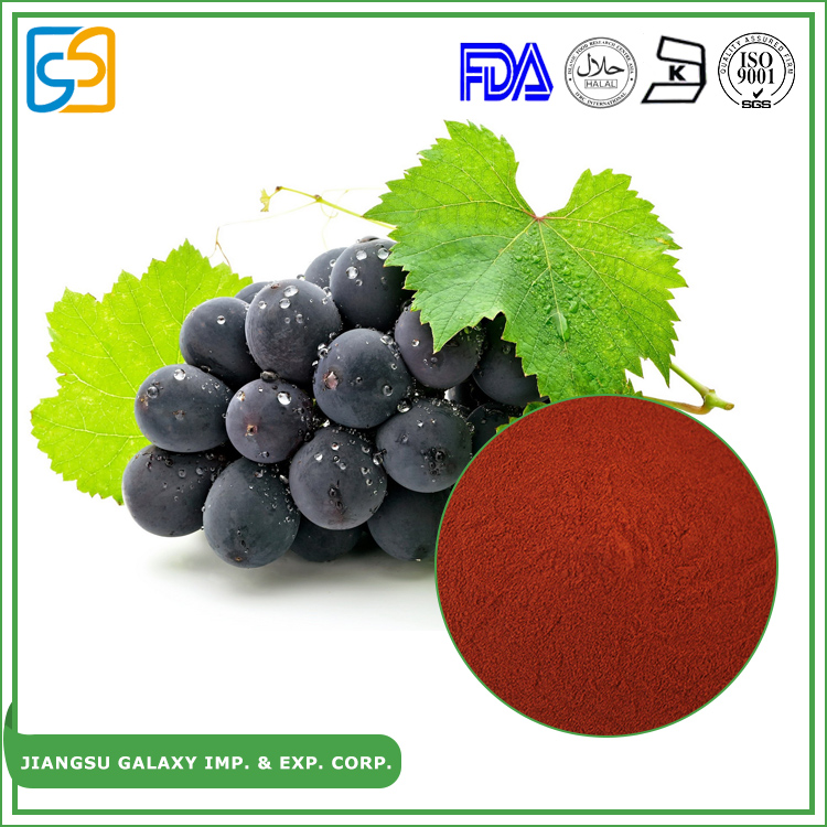 2017 new product natural antioxidant supplier hot sale grape seed extract