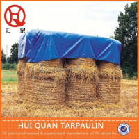 PE tarpaulin plastic film roll for agriculture