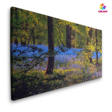 24''X36'' photo canvas printing, wood framed canvas, streched canvas