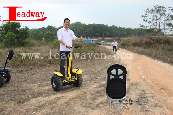 Leadway Used in snow, Mud, sand, rain, hillside off road scooter gas(RM09D-T1500)