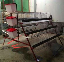 wholesale pet supplies bird poultry layer cage