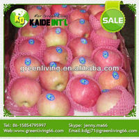 Bulk Fresh Crisp Red Fuji Apple Fruit From China Factory
